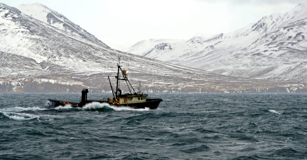 south commercial fishing permits